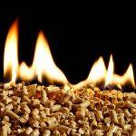 Biomassa stoken beter voor het klimaat?